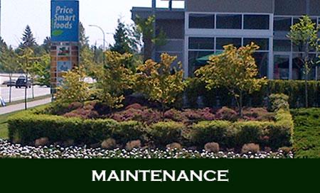 Maintenance 450
